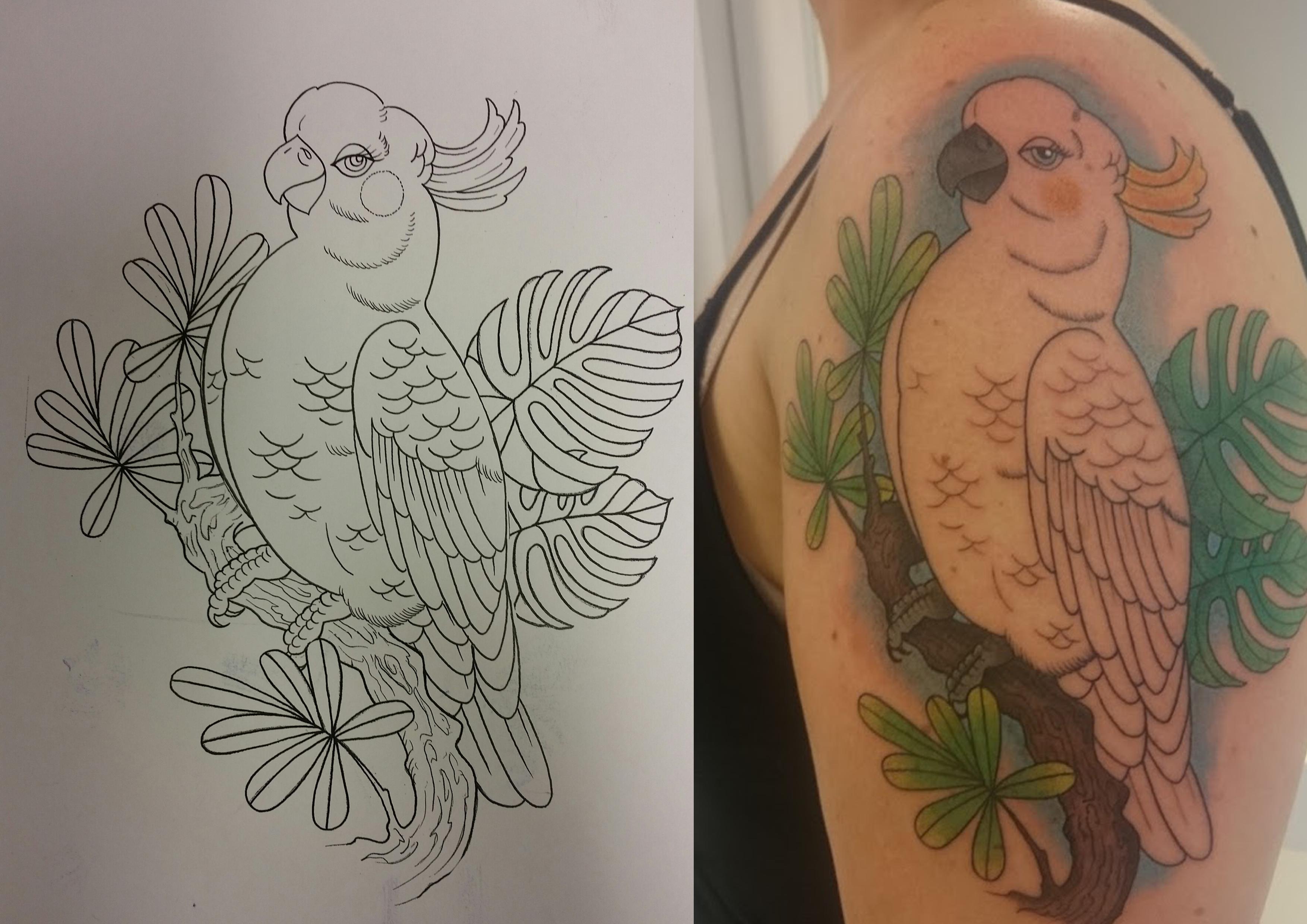 Kakaudue - tattovering