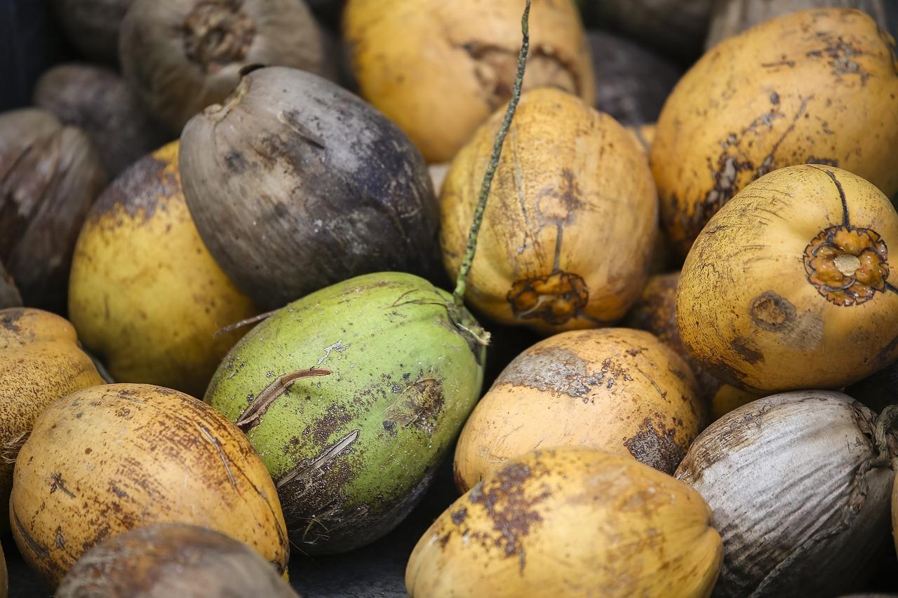 coconut-691565_1280