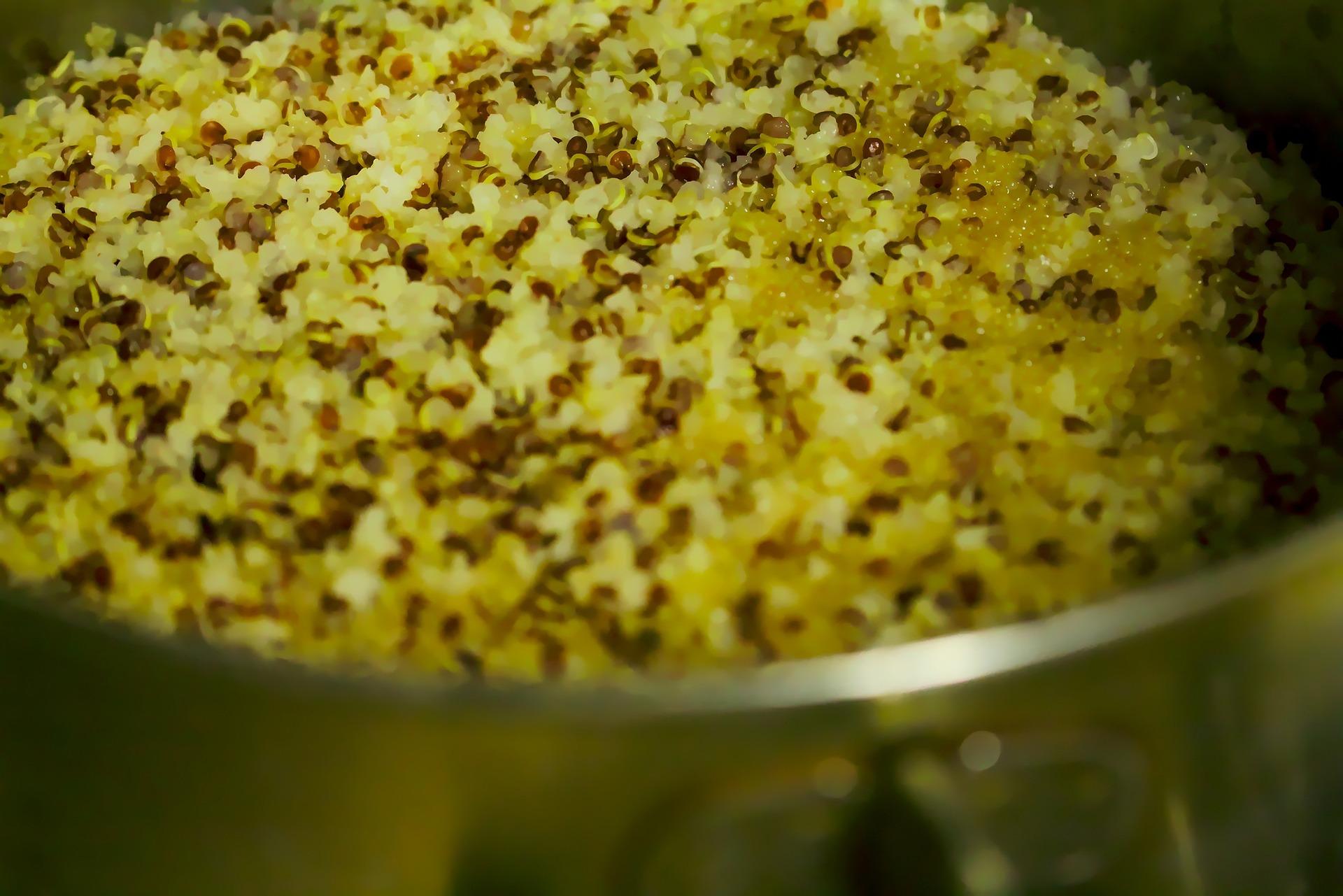 quinoa-743045_1920